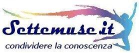 settemuse logo